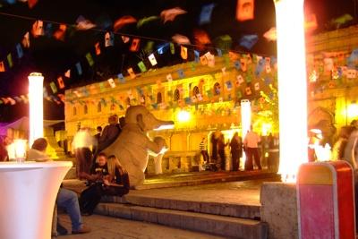 Beleuchtung für den Zoo Hannover