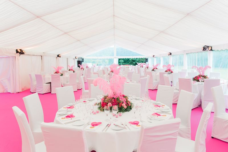 2016_Pink-Party_Schloss Surenburg_2