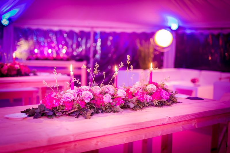 2016 Pink Party Schloss Surenburg
